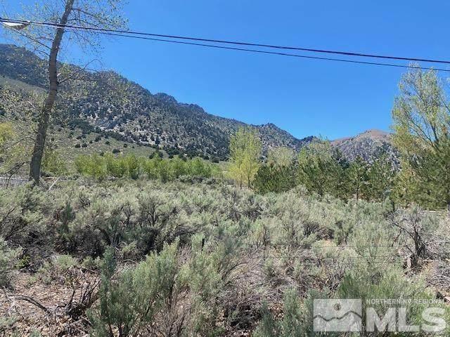 Lot 14 Us Highway 395, Topaz, Ca, CA 96133 (MLS #210006385) :: NVGemme Real Estate