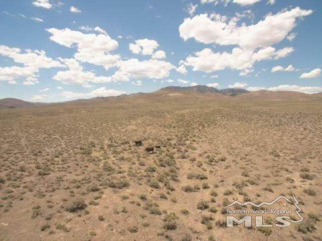 640 Acres Golden Treasures Ranch, Crescent Valley, NV 89820 (MLS #210007224) :: Colley Goode Group- eXp Realty