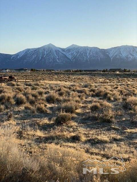 1790 Ty Lane, Minden, NV 89423 (MLS #200002819) :: The Mike Wood Team