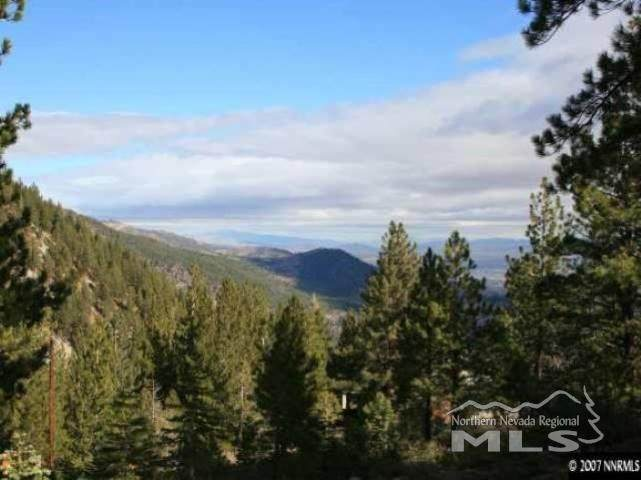 20705 Old Mount Rose Hwy - Photo 1