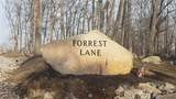 1 Forrest Lane - Photo 2