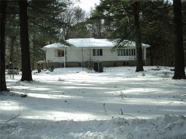 1 Snagwood Road, Foster, RI 02825 (MLS #1290683) :: Dave T Team @ RE/MAX Central