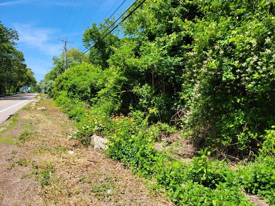 368 Shore Road - Photo 1