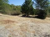 29596 Pineridge Drive - Photo 2