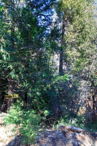 0 Fern Dell, Lake Arrowhead, CA 92352 (#2180083) :: Angelique Koster