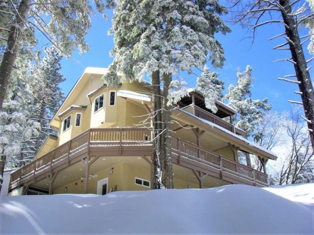 1717 Wilderness Drive, Running Springs, CA 92382 (#2190516) :: Angelique Koster