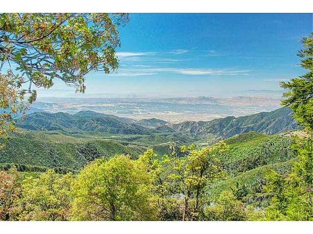 31451 Deer Lick, Running Springs, CA 92382 (#2300443) :: Koster & Krew Real Estate Group | Keller Williams