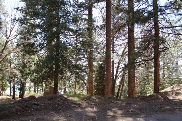 0 Preston Drive, Running Springs, CA 92382 (#2300551) :: Koster & Krew Real Estate Group | Keller Williams