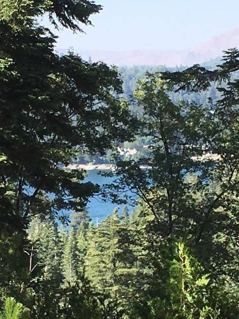 28718 Potomac Drive, Lake Arrowhead, CA 92352 (#2191043) :: Keller Williams   Angelique Koster