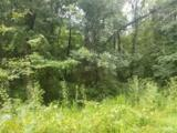 15.14 Acres Stump Hollow Road - Photo 3