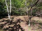 00 Bent Tree - Photo 3