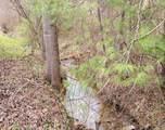 34.4 acres Highway 68 - Photo 1