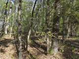 Lot 186 Scenic Lakeview Drive - Photo 13