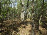 Lot 186 Scenic Lakeview Drive - Photo 14