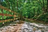 801 Cookson Creek Road - Photo 73