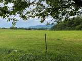 141 County Road 903 - Photo 13