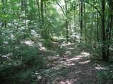 1 Timber Lane - Photo 1