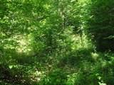 1 Timber Lane - Photo 12