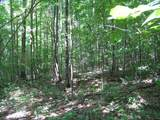 1 Timber Lane - Photo 21