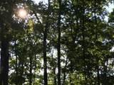 Lot 272 Spruce Drive - Photo 9