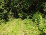 1134 Mccustion Cemetery Road - Photo 13