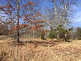 1418 Raccoon Ridge Road - Photo 4