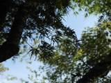 200 Bent Tree Drive Nw - Photo 28
