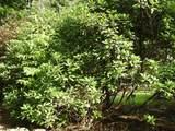 200 Bent Tree Drive Nw - Photo 33