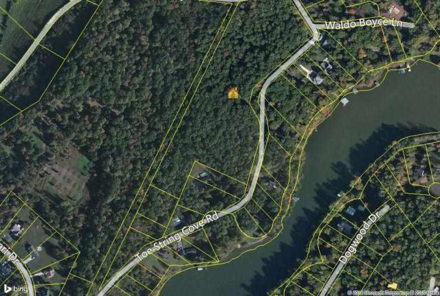 15.6 Acres Toestring Cove Road, Spring City, TN 37381 (#20143090) :: Billy Houston Group