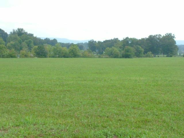 lot #2 Gillespie Bend Road, Dayton, TN 37321 (MLS #20144247) :: The Mark Hite Team