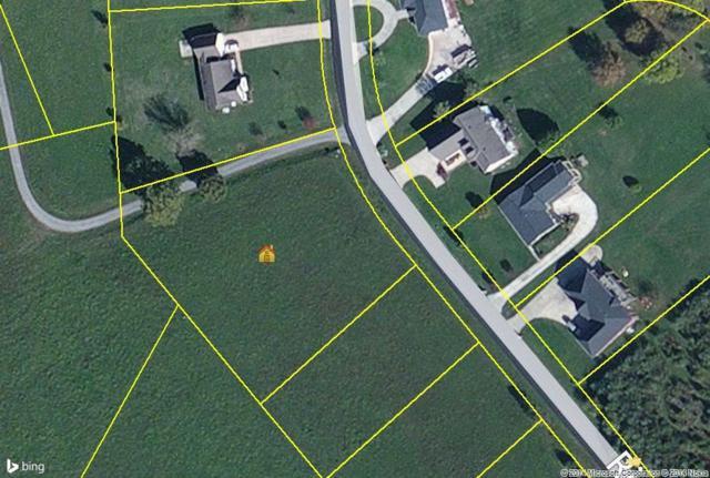 lot #68 Riverbend Drive, Dayton, TN 37321 (MLS #20144273) :: The Mark Hite Team