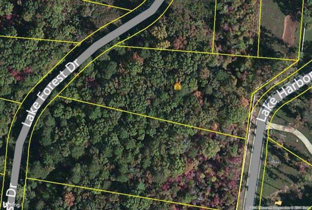 Lot 71 Lake Forest Drive, Spring City, TN 37381 (#20144771) :: Billy Houston Group
