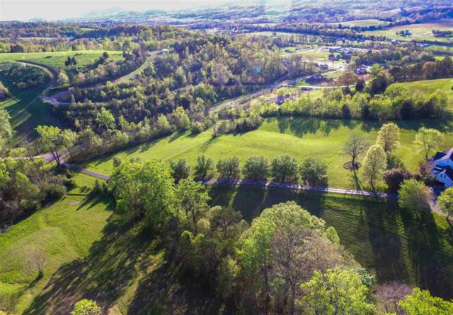 Meadow Green Lane, Dayton, TN 37321 (#20172273) :: Billy Houston Group