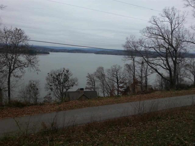 1133 Johnson Lane, Ten Mile, TN 37880 (#20174425) :: Billy Houston Group