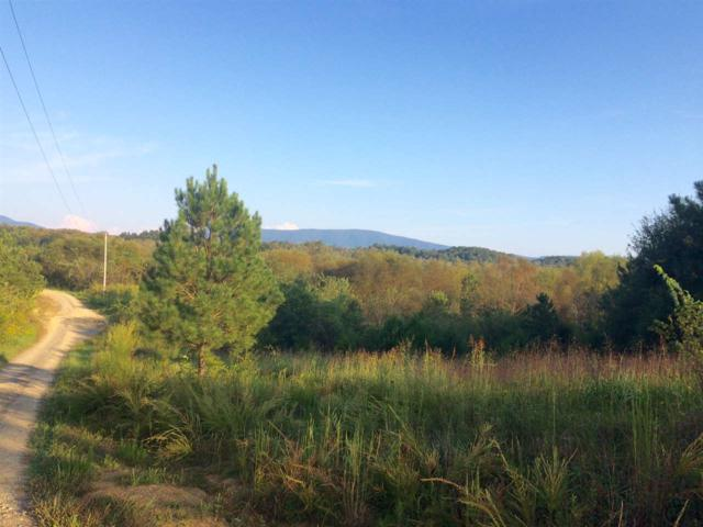 Lot 14 Chestuee Crossing Road, Delano, TN 37325 (#20175412) :: Billy Houston Group