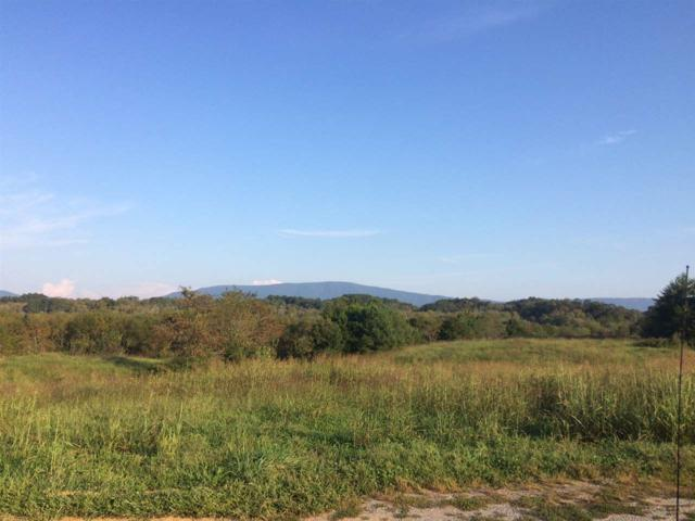 Lot 16 Chestuee Crossing Road, Delano, TN 37325 (#20175414) :: Billy Houston Group