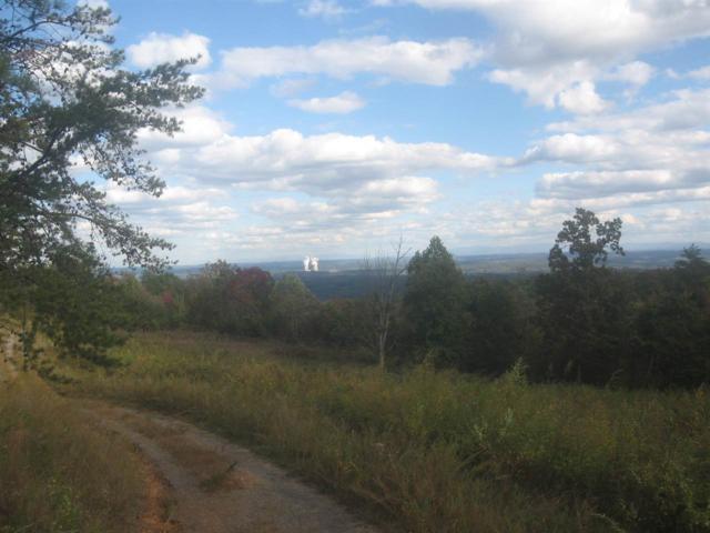 1122 Black Bear Trail, Dayton, TN 37321 (#20175898) :: Billy Houston Group