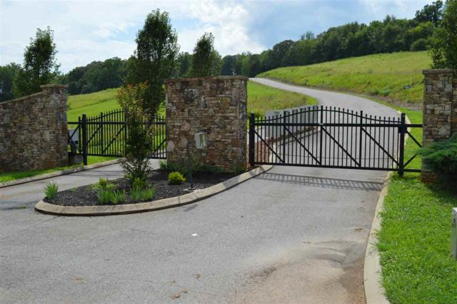 Lot 67 The Gates Dr, Decatur, TN 37322 (#20176262) :: Billy Houston Group