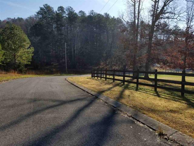 County Rd 7, Calhoun, TN 37309 (#20176564) :: Billy Houston Group