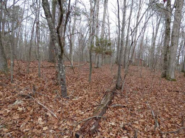 lot #186 Scenic Lakeview Drive, Spring City, TN 37381 (#20176610) :: Billy Houston Group