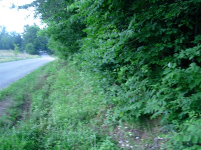 1399 Dry Fork Valley Road, Ten Mile, TN 37880 (MLS #20176974) :: The Mark Hite Team