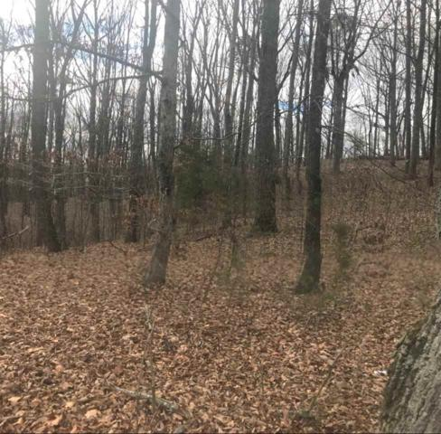Lot 37 Alecia Lane SE, Cleveland, TN 37323 (#20180159) :: Billy Houston Group