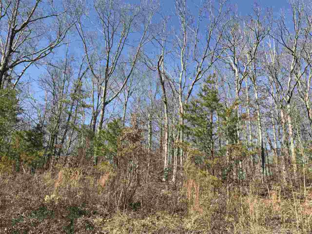 Lot 31 Sneed Road, Decatur, TN 37322 (#20180292) :: Billy Houston Group