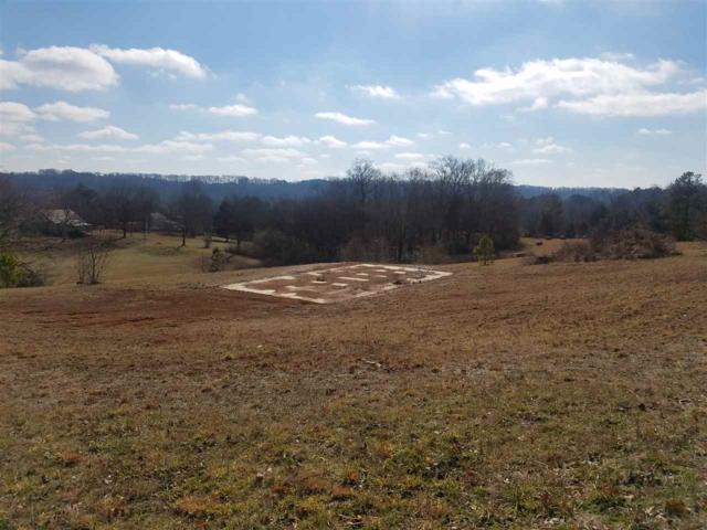 607 Pond Hill Road, Niota, TN 37826 (#20180394) :: Billy Houston Group