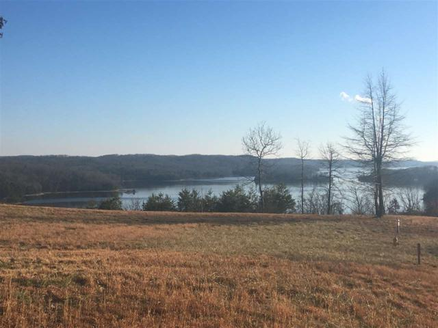Lot#42 Waterside Way, Spring City, TN 37381 (#20180702) :: Billy Houston Group