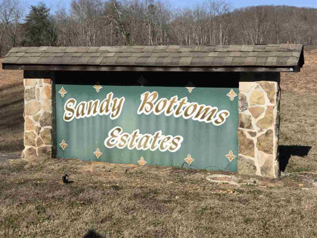 Sandy Bottoms Estate, Ten Mile, TN 37880 (#20180820) :: Billy Houston Group
