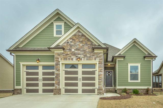 8446 Dakota Sky Way, Ooltewah, TN 37363 (MLS #20180920) :: The Edrington Team