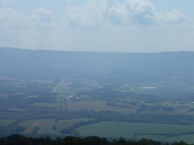 Lot 37 Gray Rock View, Pikeville, TN 37367 (#20181326) :: Billy Houston Group
