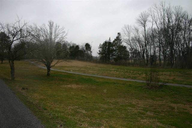 Lot 2 Lakehaven Lane, Decatur, TN 37322 (MLS #20181347) :: The Mark Hite Team