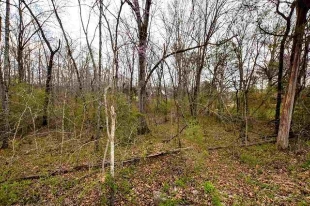 Parcel 007.00 Scenic Lakeview Drive, Spring City, TN 37321 (#20181796) :: Billy Houston Group